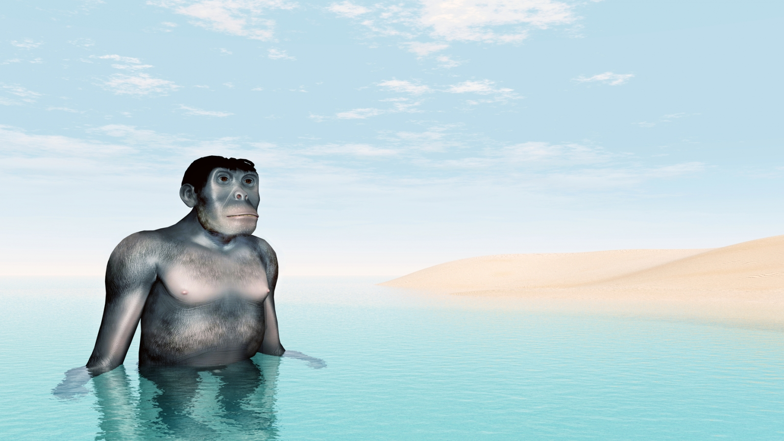 aquatic ape theory