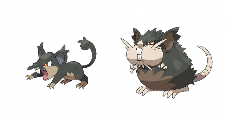 Pokemon Sun Moon Alolan Rattata Raticate