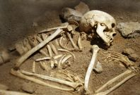 skeleton human remains