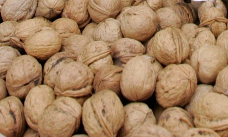 Walnuts in Diet Can Slow Tumor Growth