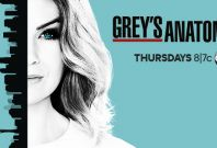 Grey\'s Anatomy season 13