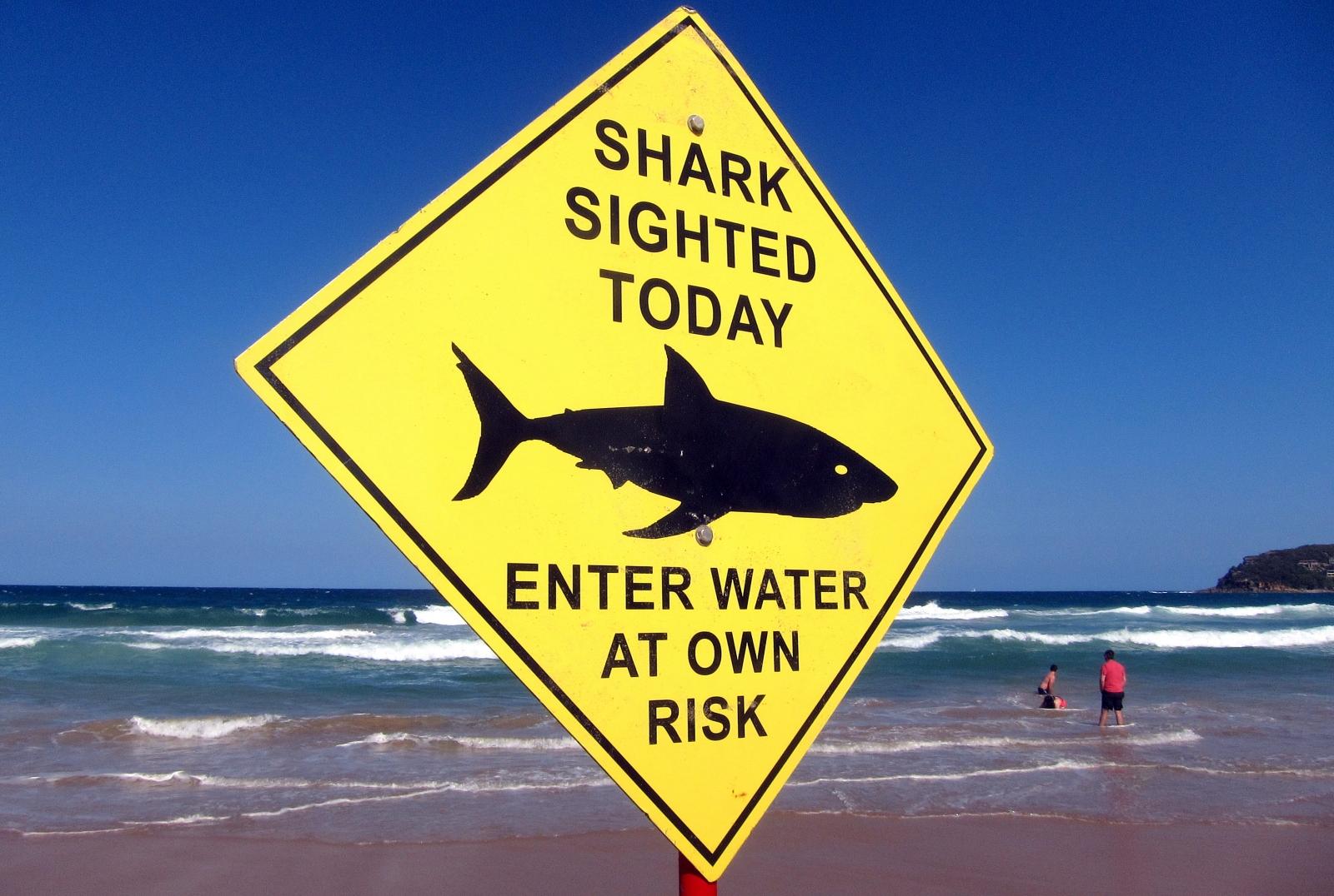 Shark warning Australia