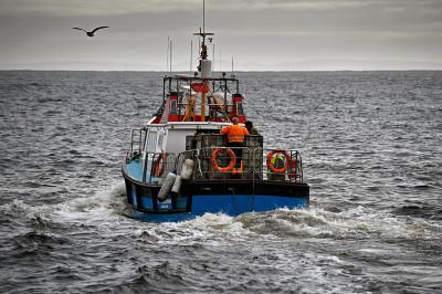 Foula Shetland Islands Scotland