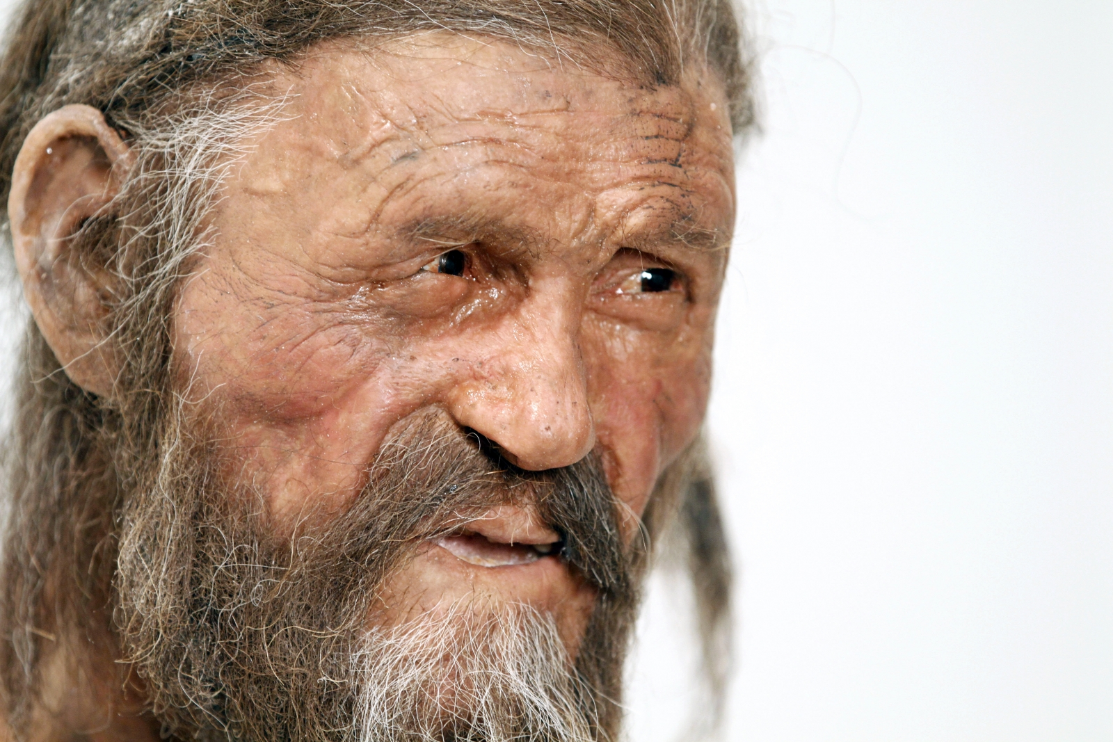 Body Art: Otzi the 5,300-Year-Old Mummified Iceman Had 61 ... |Otzi The Iceman