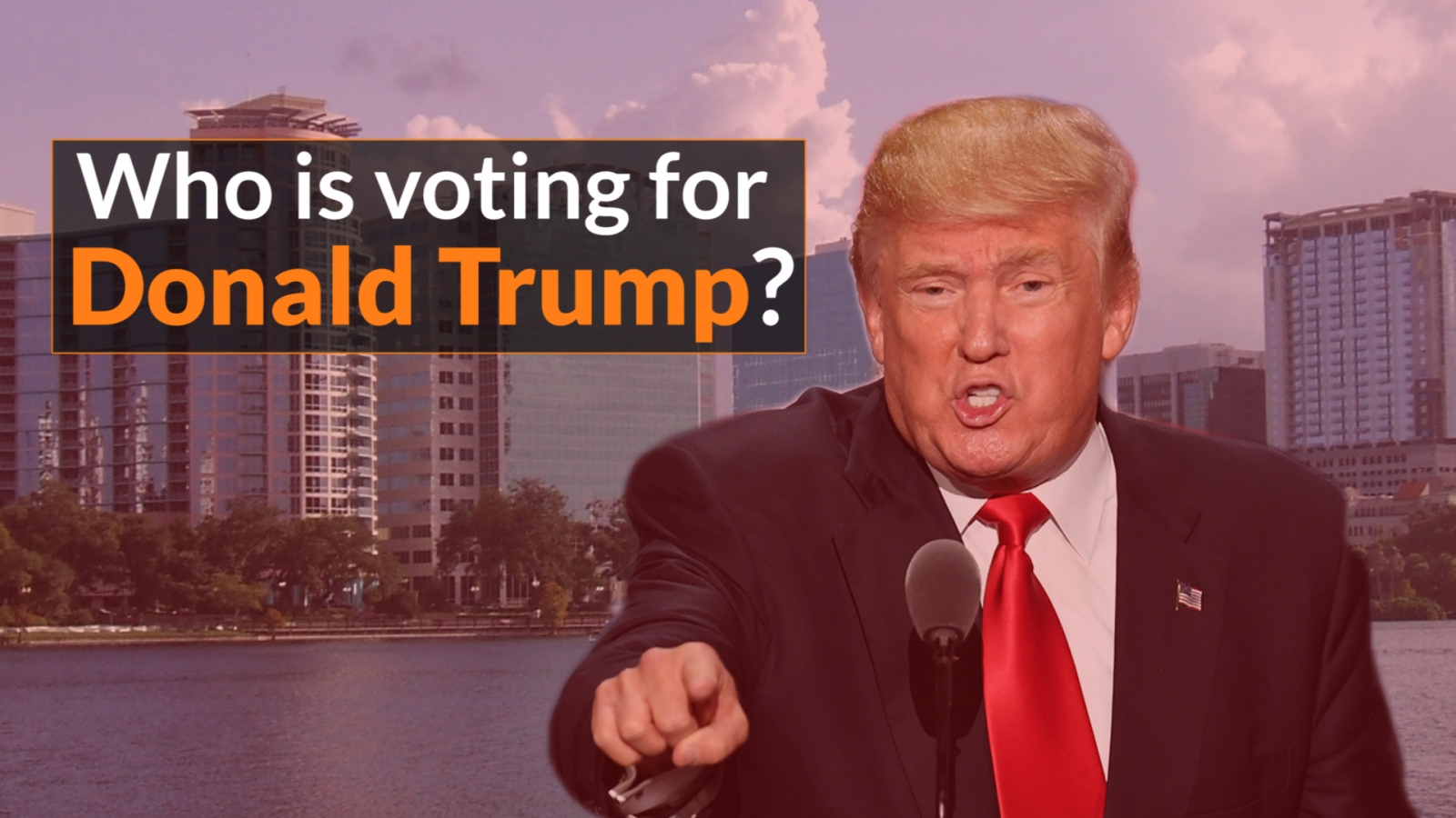 Who is voting for Donald Trump?