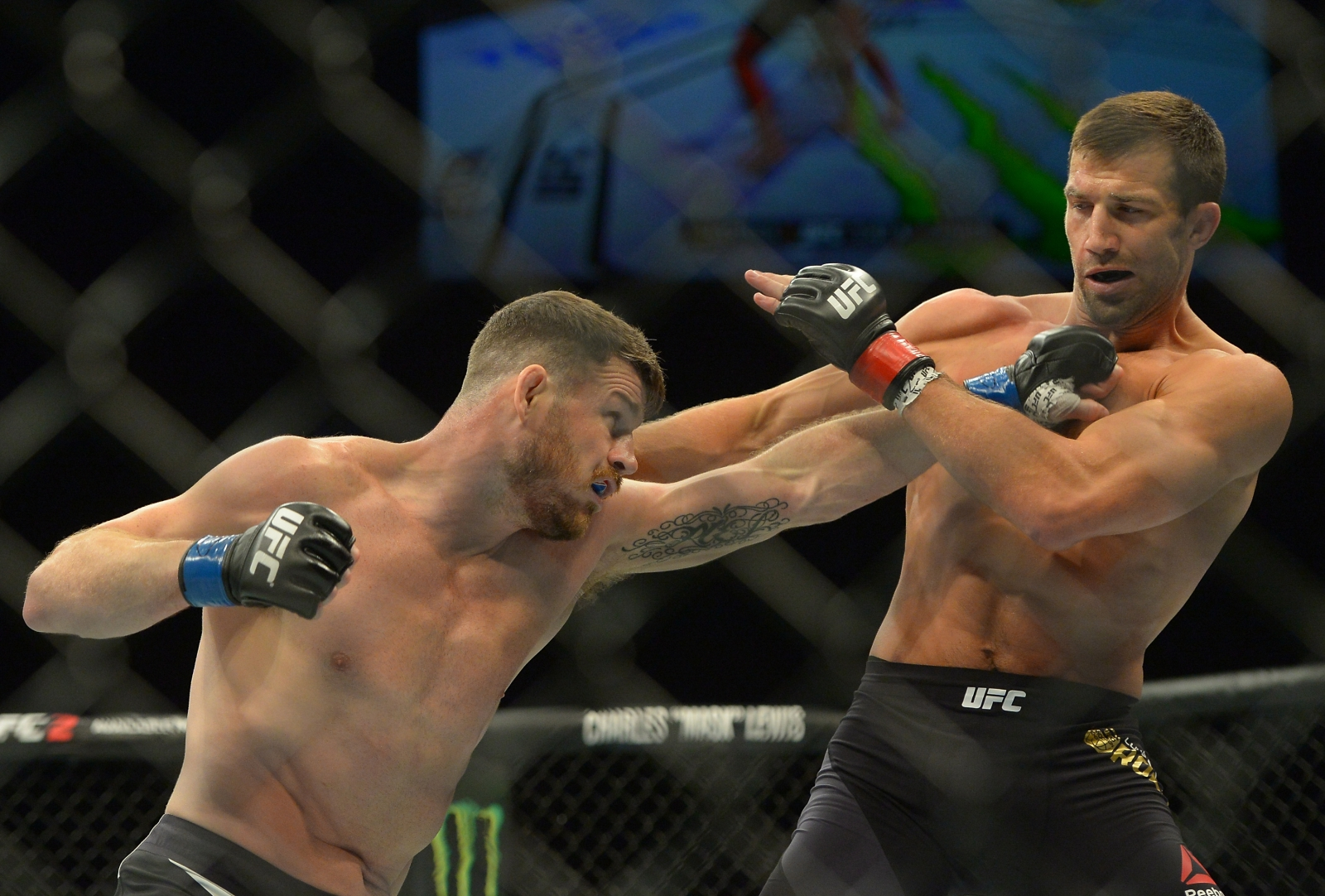 Michael Bisping vs Luke Rockhold