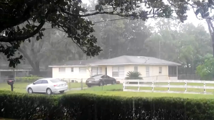 Hurricane Matthew pushes over trees in Florida