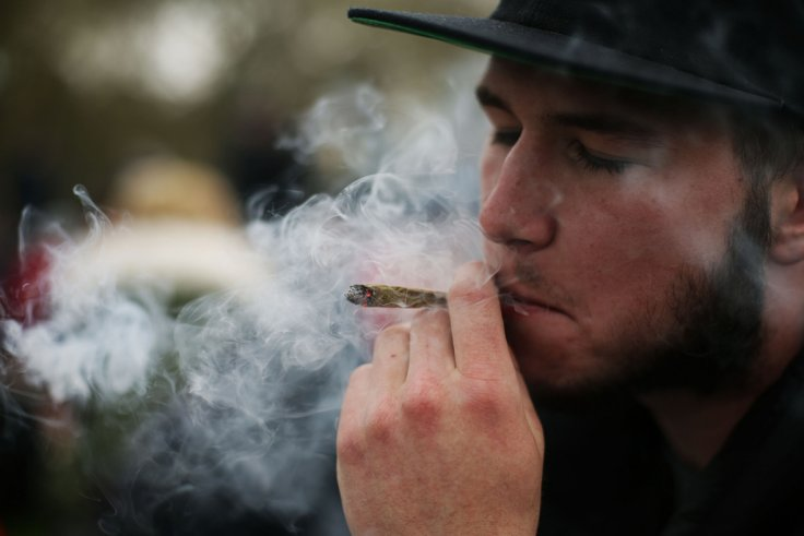 Cannabis: Heavy marijuana use ups risk of broken bones