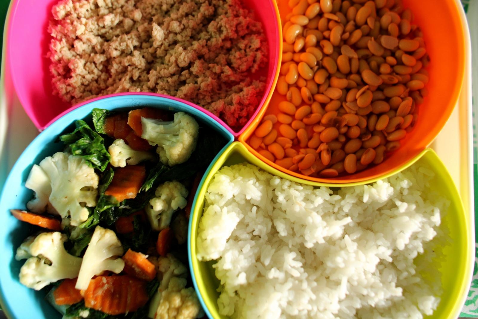 Unicef child food diet