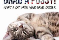 Peta Grab A Pussy billboard