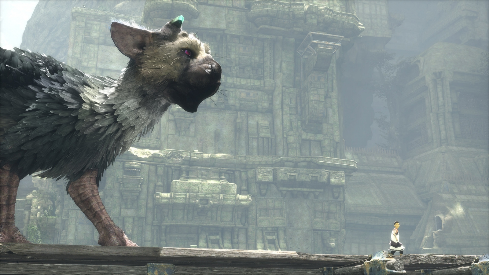 [Update] The Last Guardian Finally Goes Gold