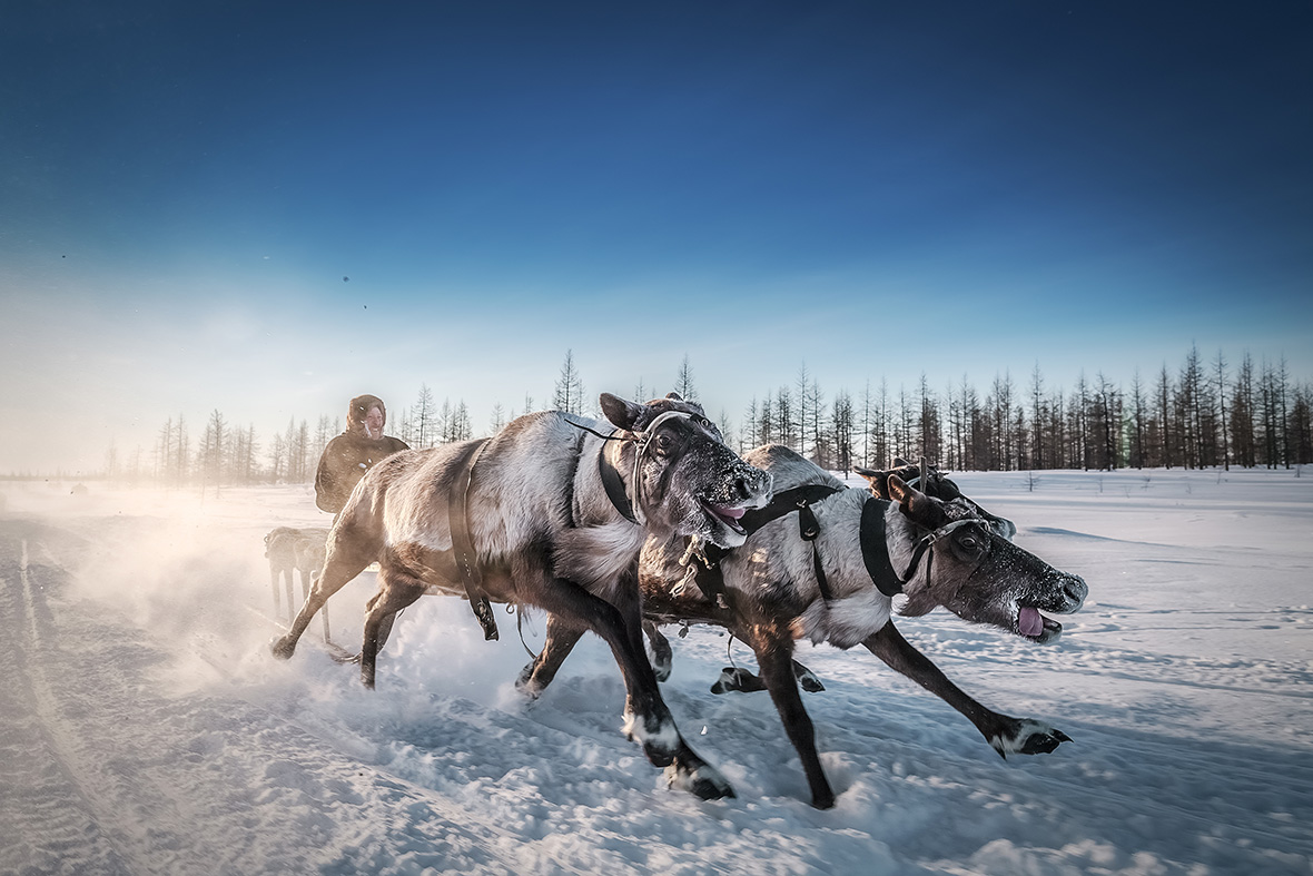 Sony World Photography Awards 2017 open entries