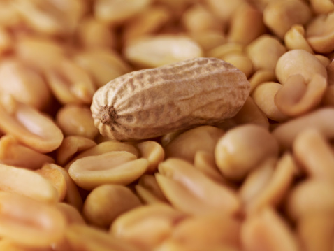 Doctors: Skin patch may treat peanut allergies