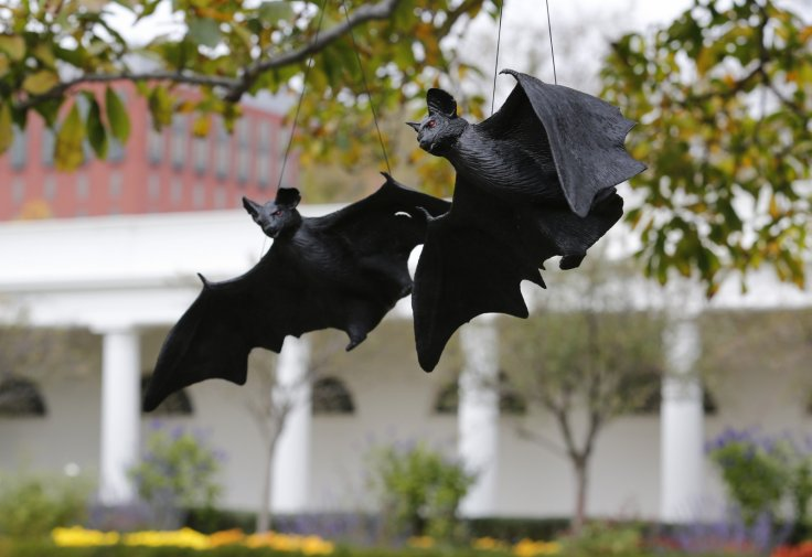 Halloween traditions