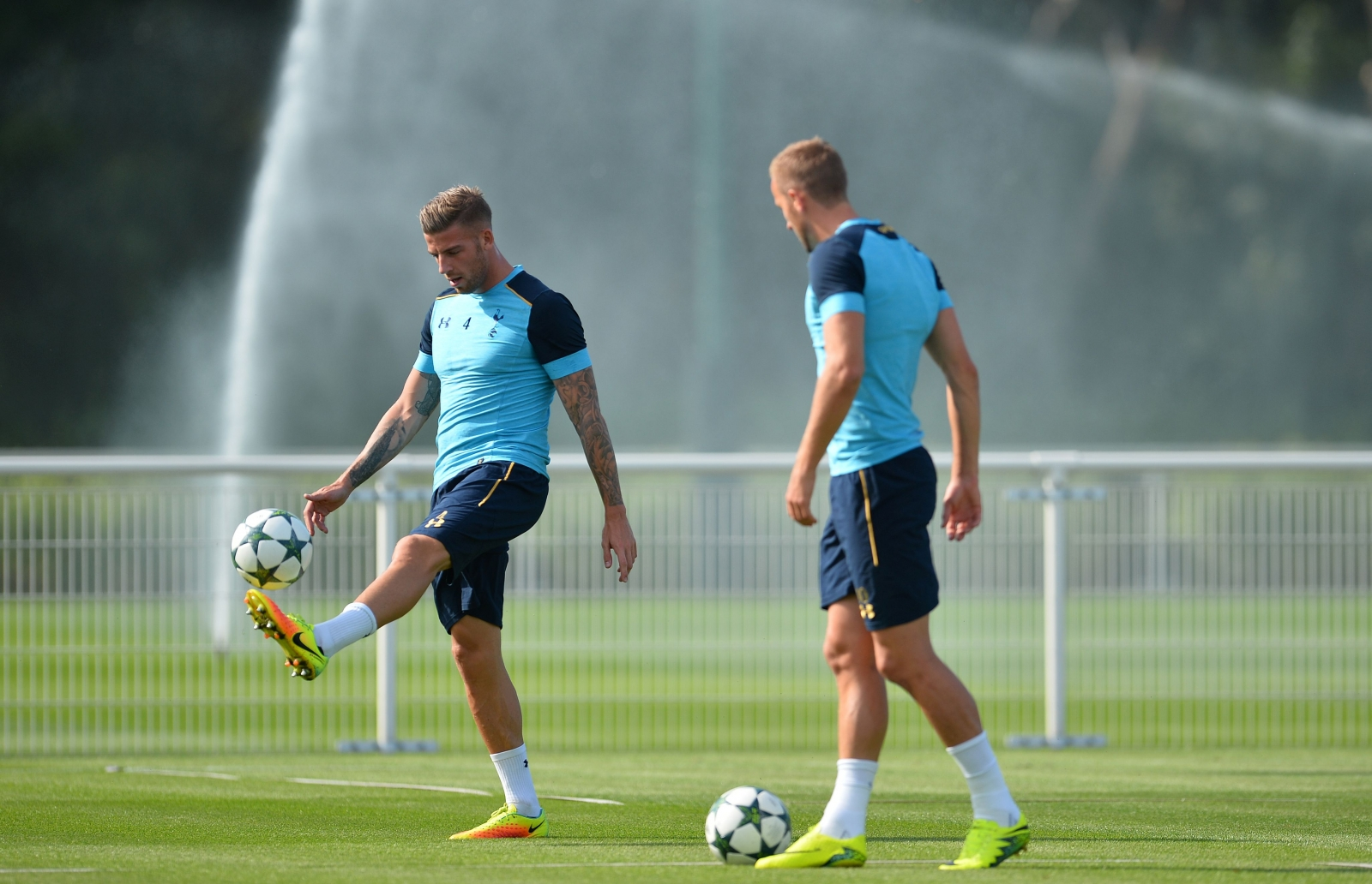 Kane and Alderweireld