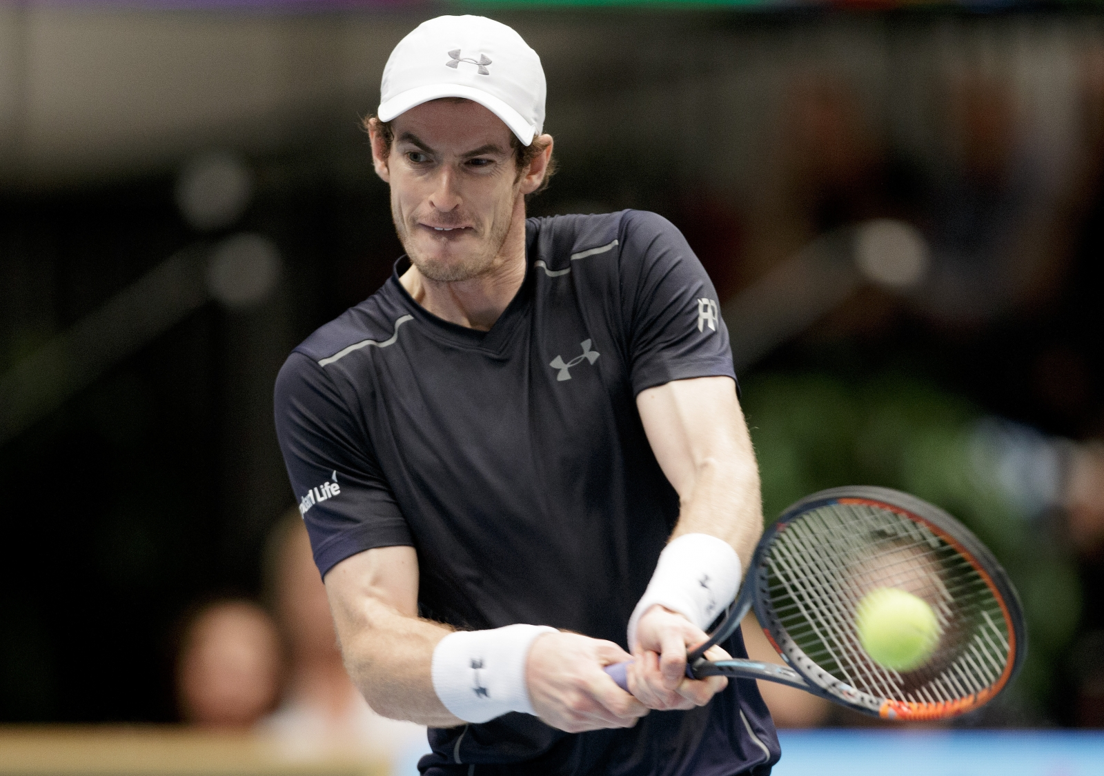 andy murray - photo #1