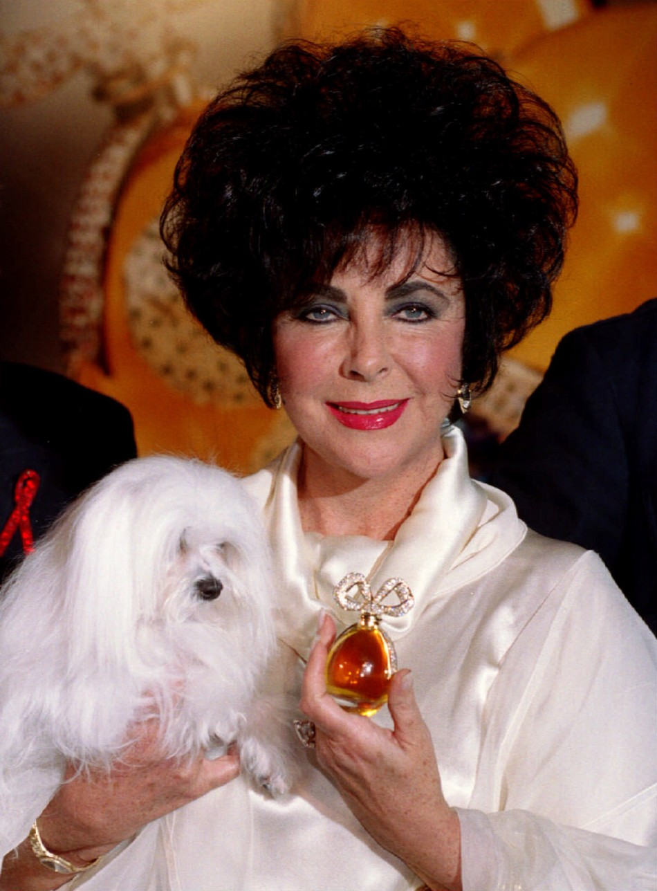 Liz Taylor S Dazzling Jewelry Collection For Auction At