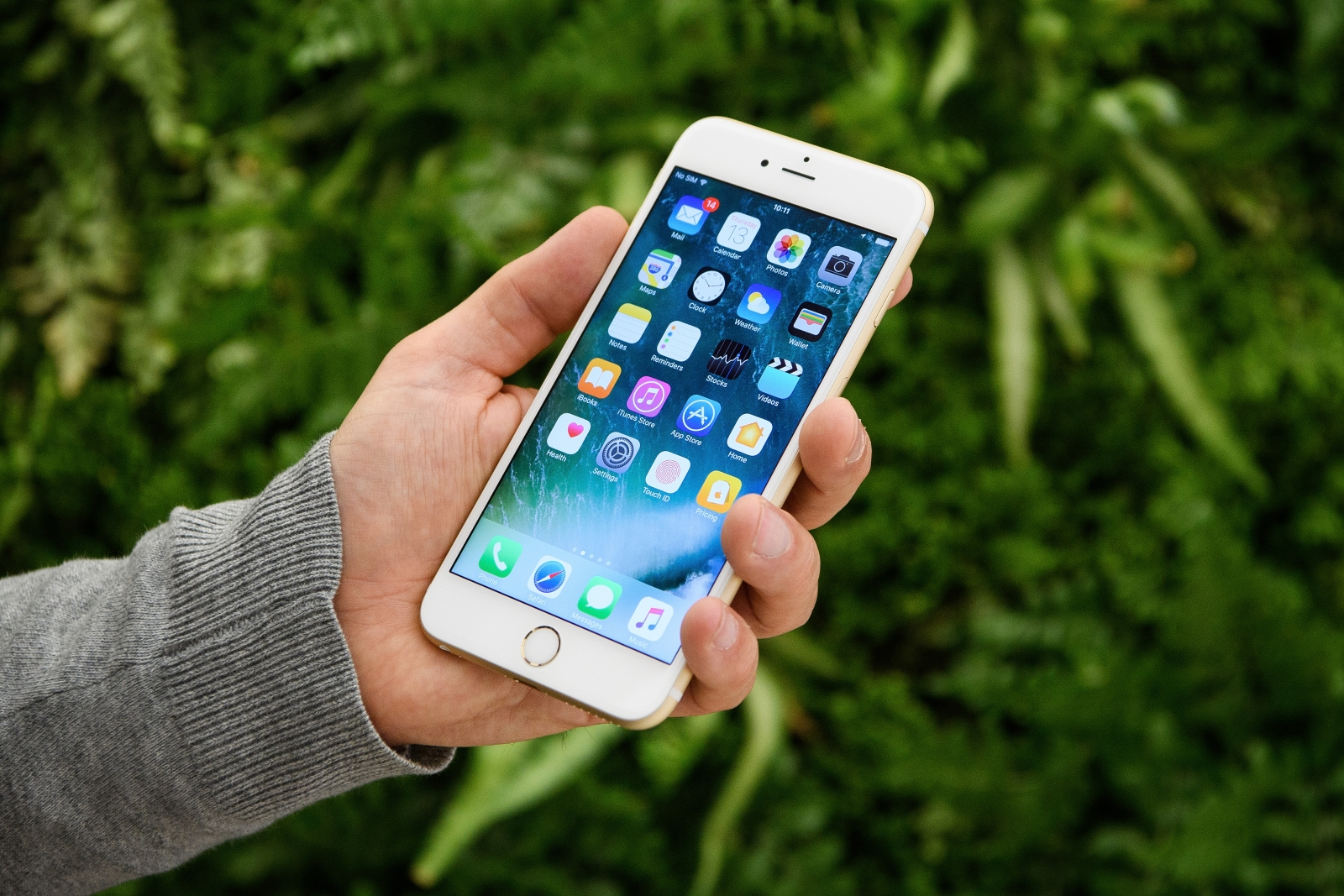 iPhone 8 to use OLED screen