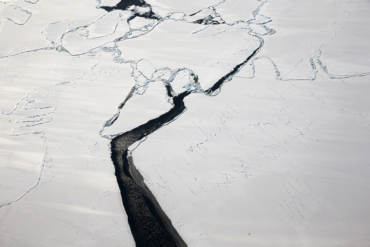Operation IceBridge Antarctic sea ice
