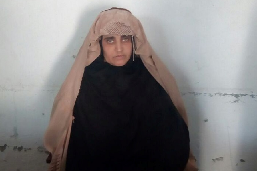 Pakistan denies National Geographic Sharbat Gula bail