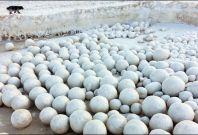 snowballs siberia