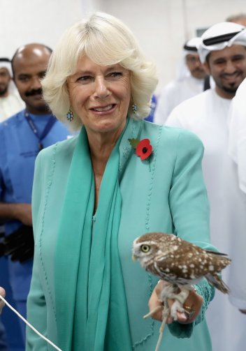 Duchess of Cornwall with a burrowing owl