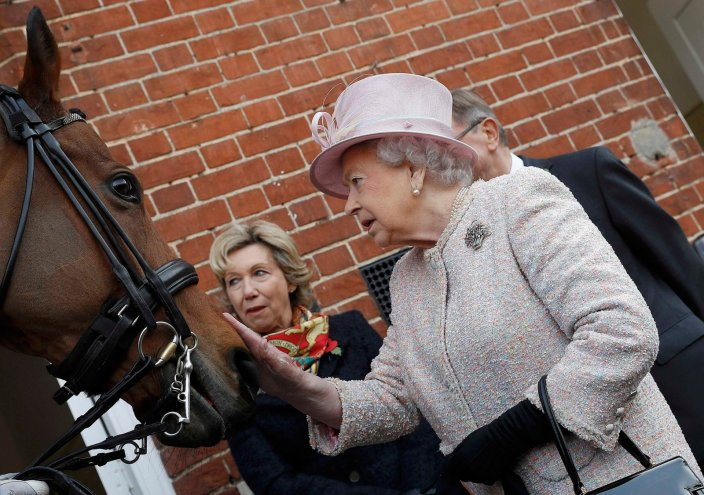 The Queen meets former racehorse