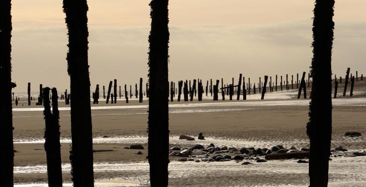 Beach groynes
