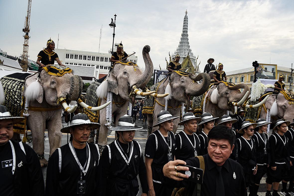 Once elefantes de la antigua capital de Tailandia, Ayutthaya, marcharon por las calles de Bangkok como parte de una procesión dedicada al difunto rey tailandés Bhumibol Adulyadej, quien murió el 13 de octubre | Lillian Suwanrumpha / AFP