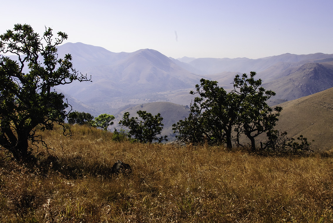 Barberton South Africa