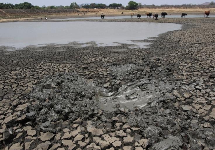 drought  Zimbabwe