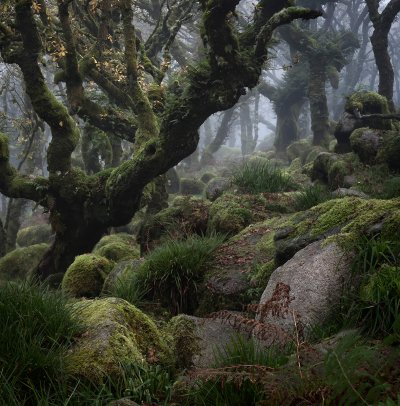 Landscape Photographer of the Year 2016