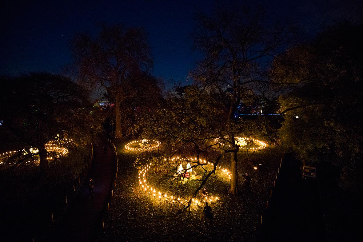 Christmas 2016 at Kew Gardens in London: Mile-long trail ...