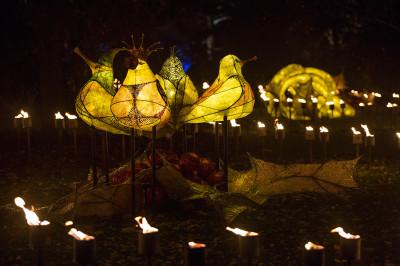 Kew Gardens Christmas 2016 illuminations