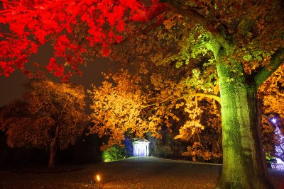Kew Gardens Christmas 2016 illuminations