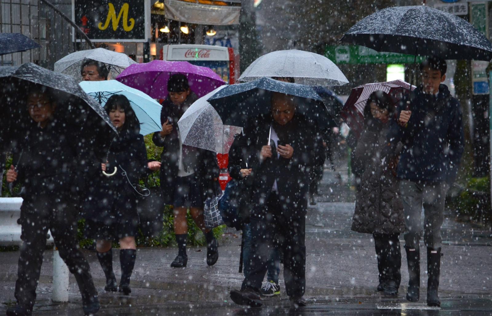Tokyo snowfall