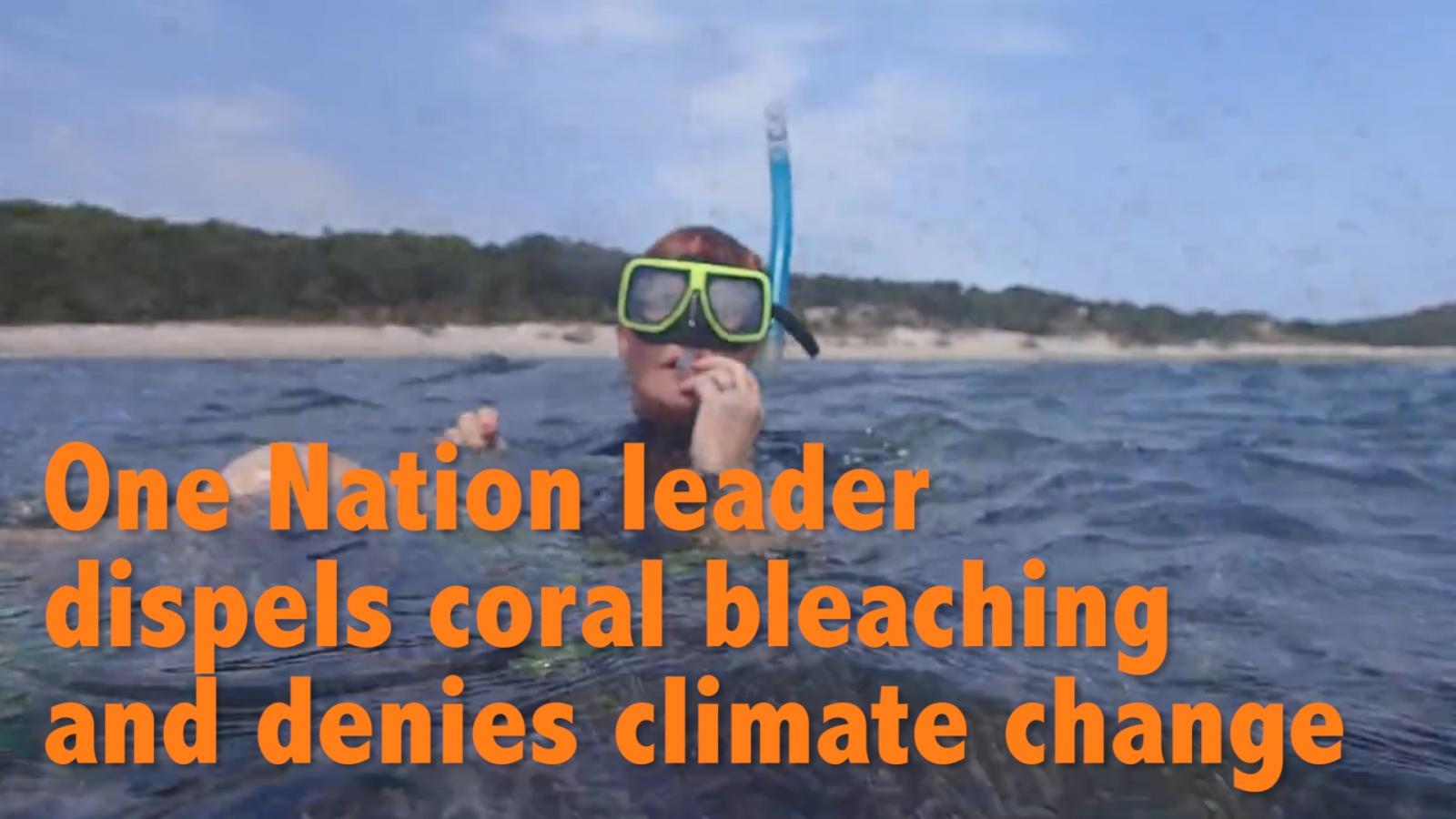 pauline hanson dispels coral bleaching