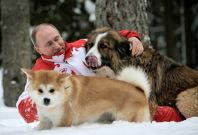 Putin with dogs