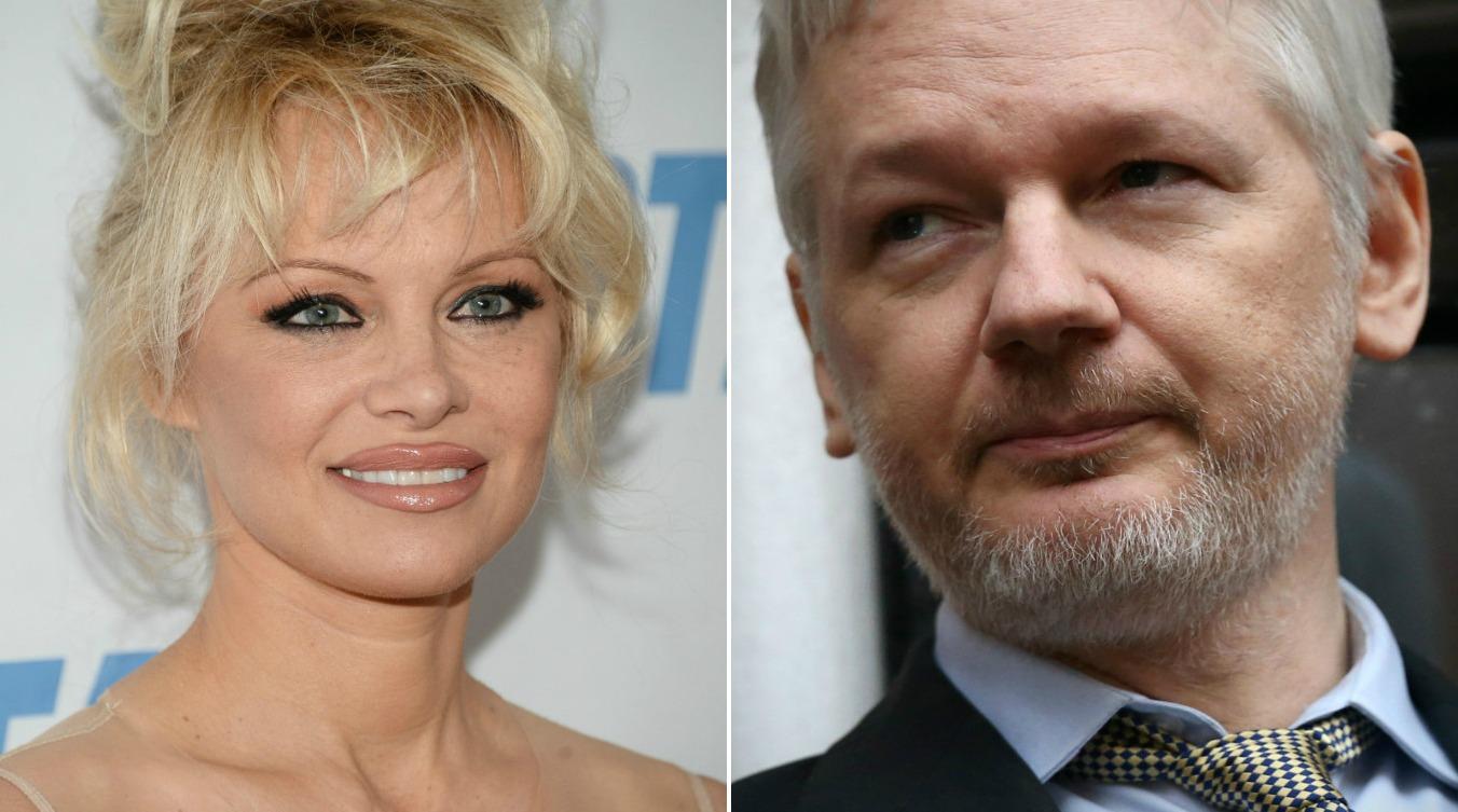 Anderson, Assange comp