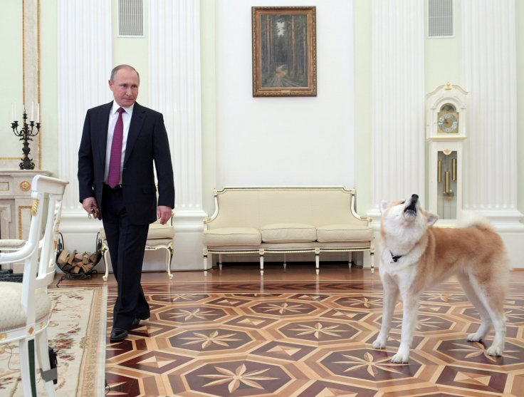 Vladimir Putin dog diplomacy