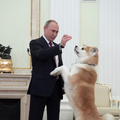 Vladimir Putin dog diplomacy Yume
