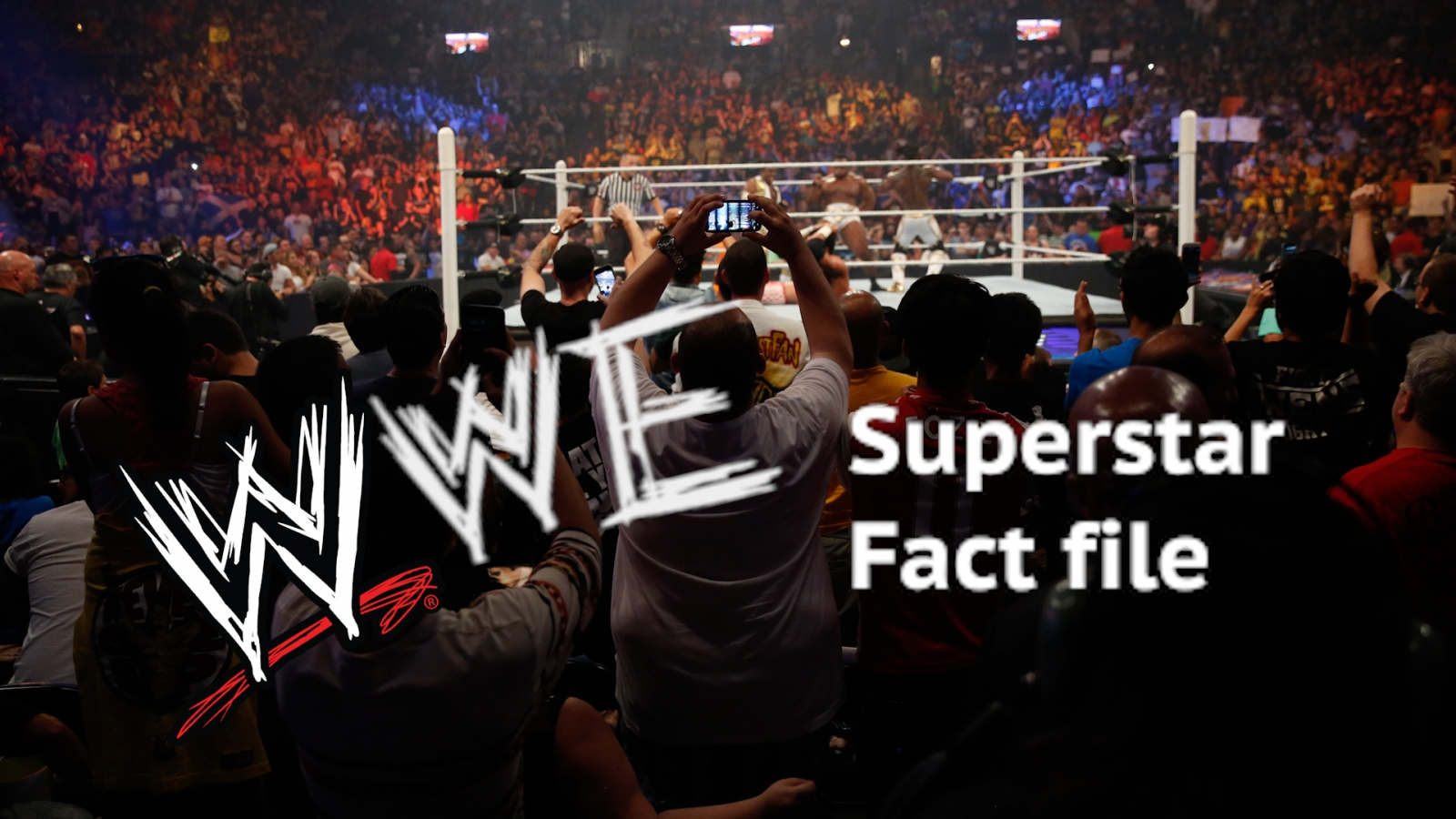 WWE superstar fact file