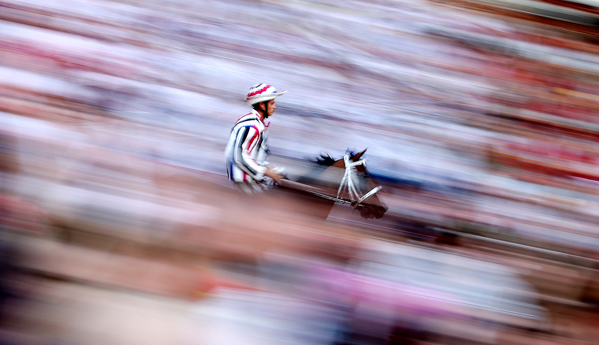 Sport photos of the year 2016