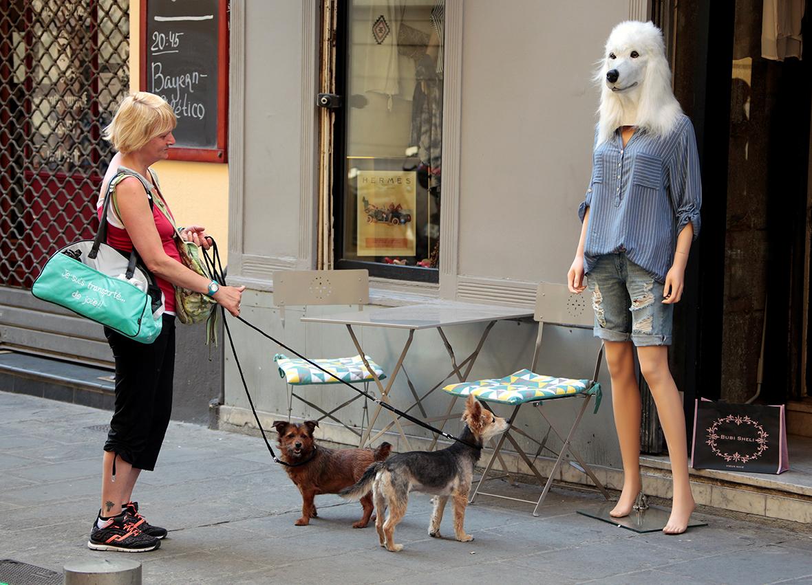 Manequin dog