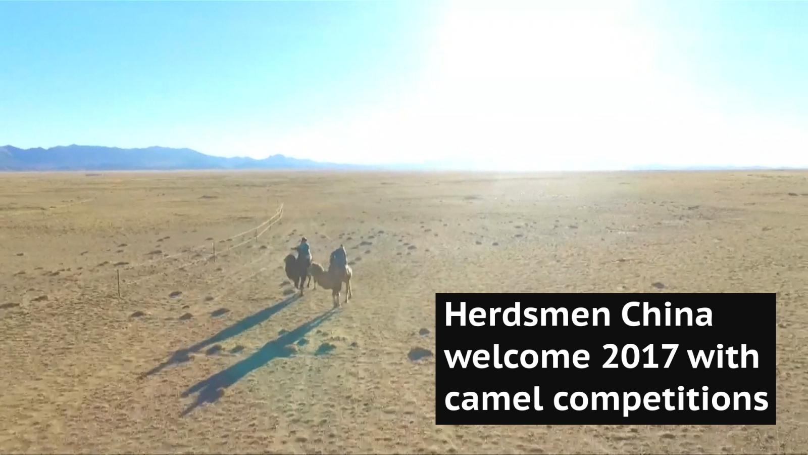 Herdsmen in north China