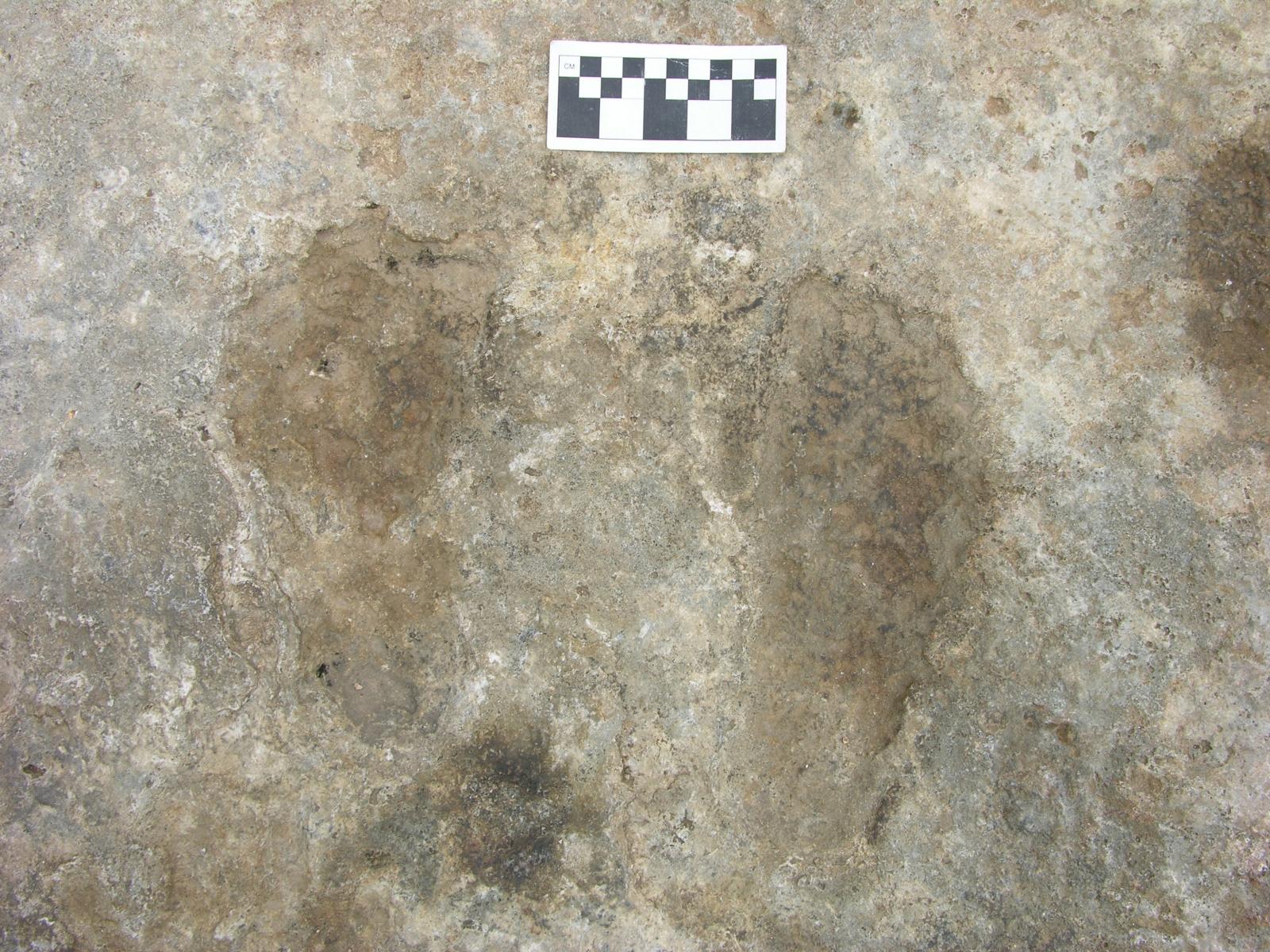 Chusang footprints