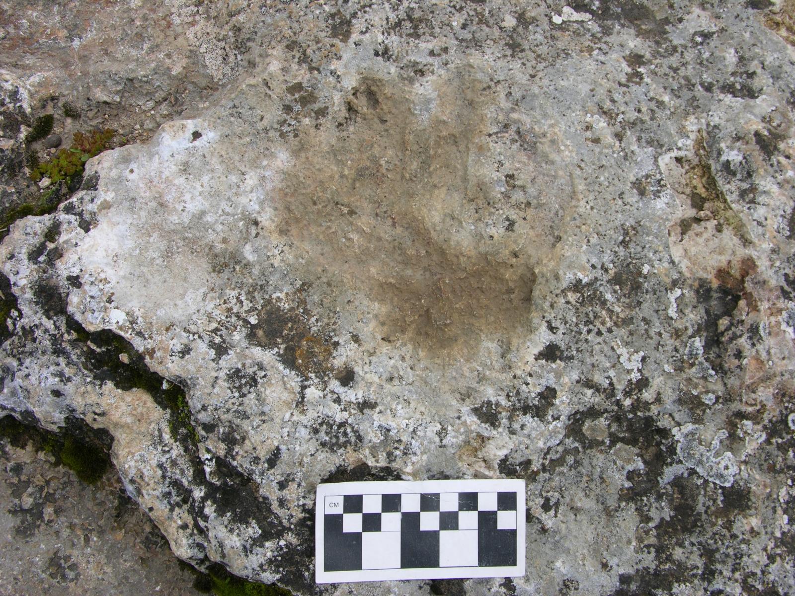 Chusang handprint