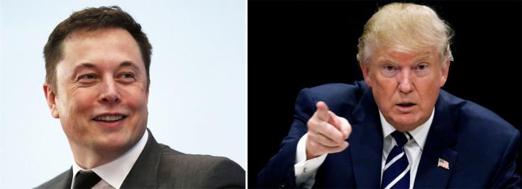 American Energy Alliance Hates Elon Musk And Wants Trump