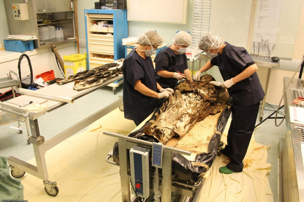 burial skeletal remains