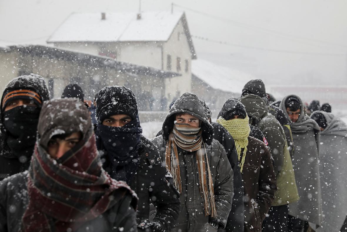Belgrade refugees